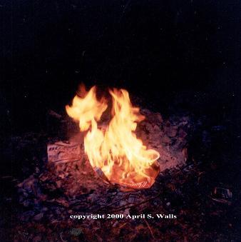 April S. Walls-Stuart - Flames