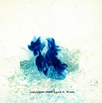 April S. Walls-Stuart - Blue Flames