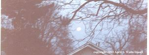 April S. Walls-Stuart - The Moon